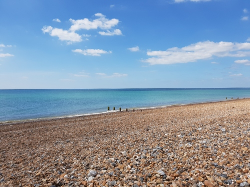 beachview-100718